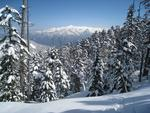 14.猫岳スキー
