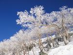 39.四ッ岳スキー