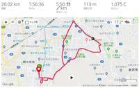 84.犀川朝ラン(20km)